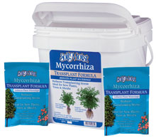 photo of Soil Moist Transplant pail